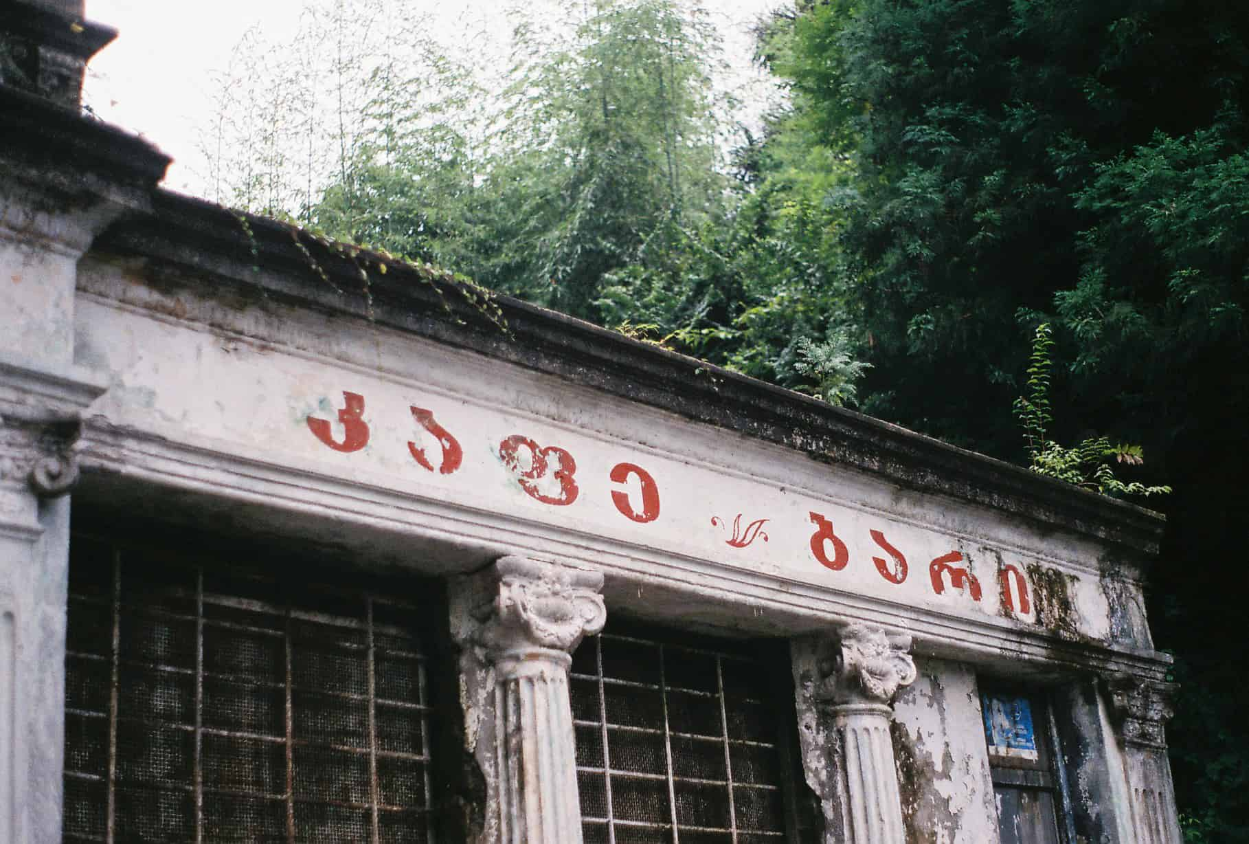 The Lush Wonderland: Exploring Batumi's Botanical Garden