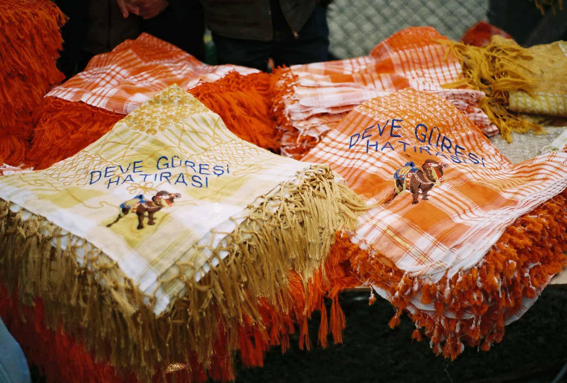 Orange Camel Wrestling Scarves (camel wrestling festival)