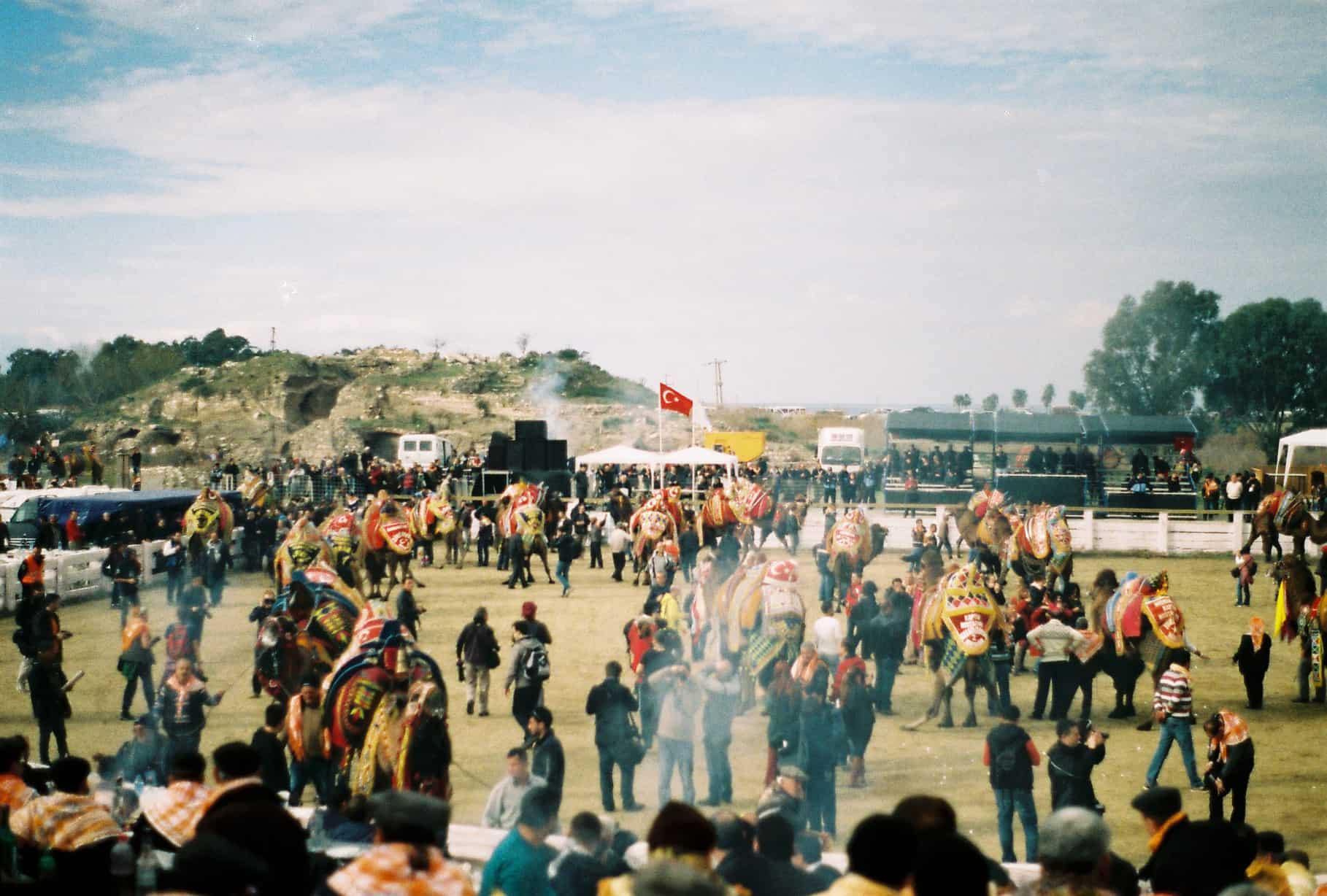 Crowded Camel Pitch (camel wrestling festival)