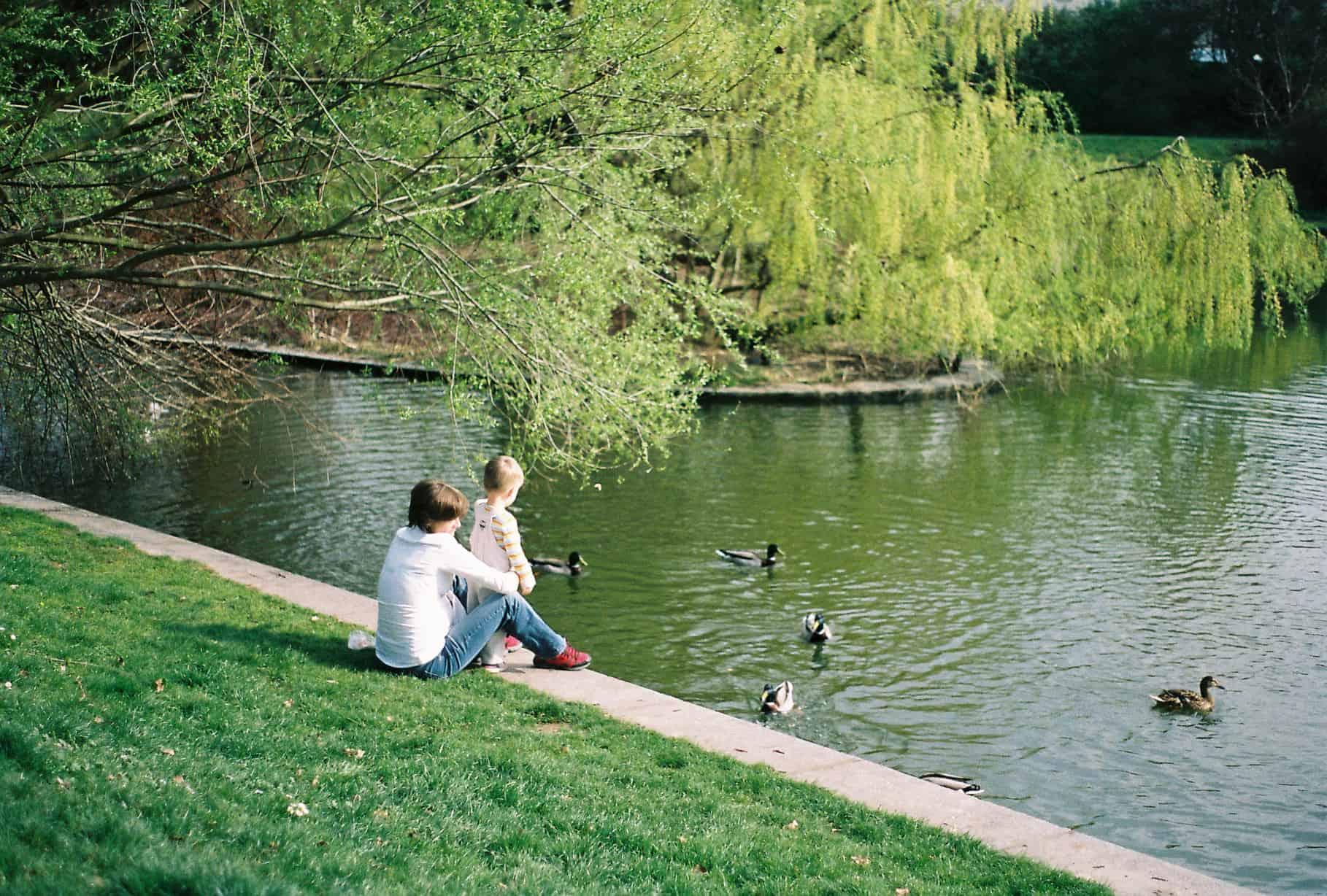 Brevnov Monastery Duck Pond