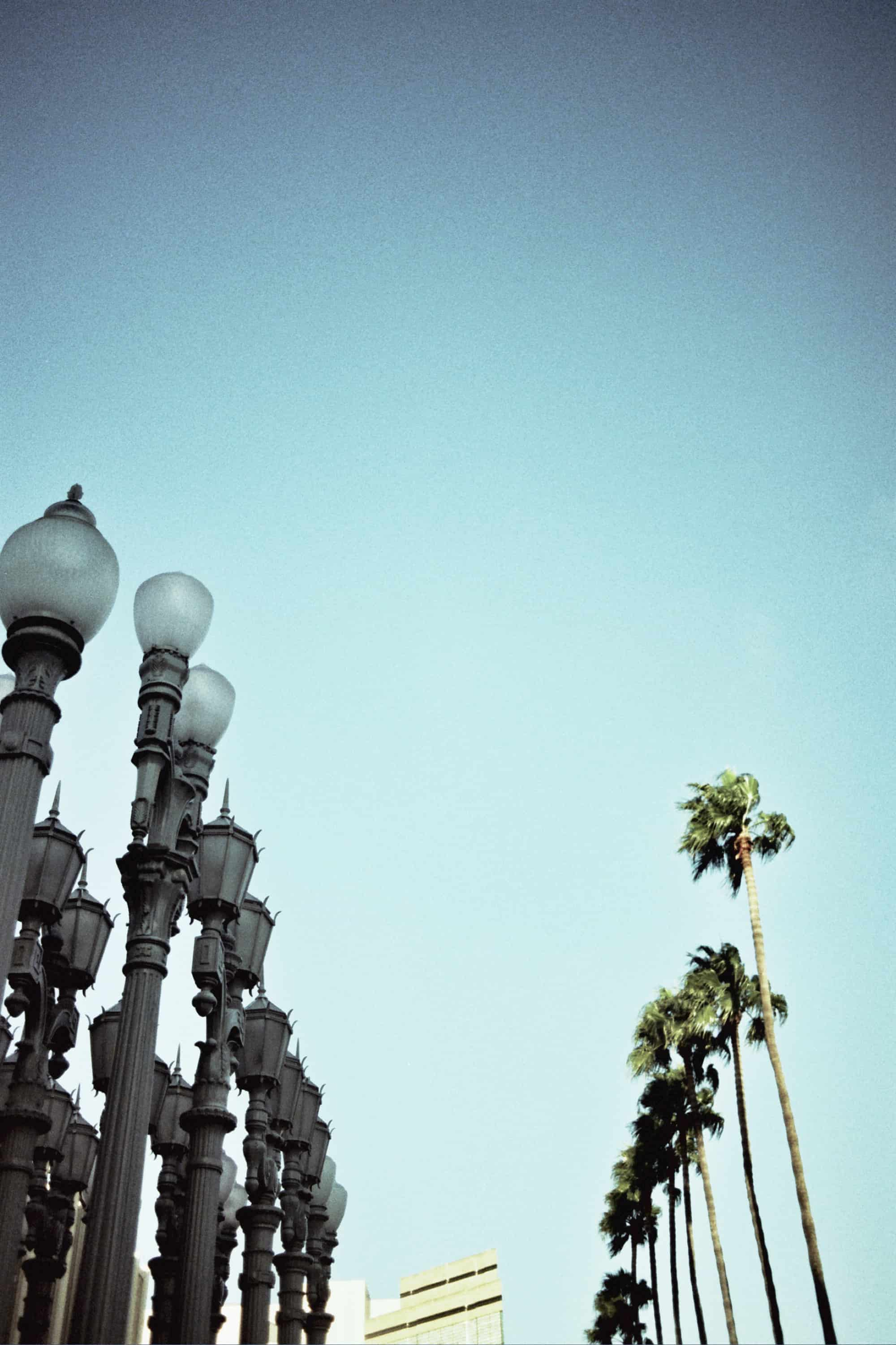 i love la things to do in los angeles
