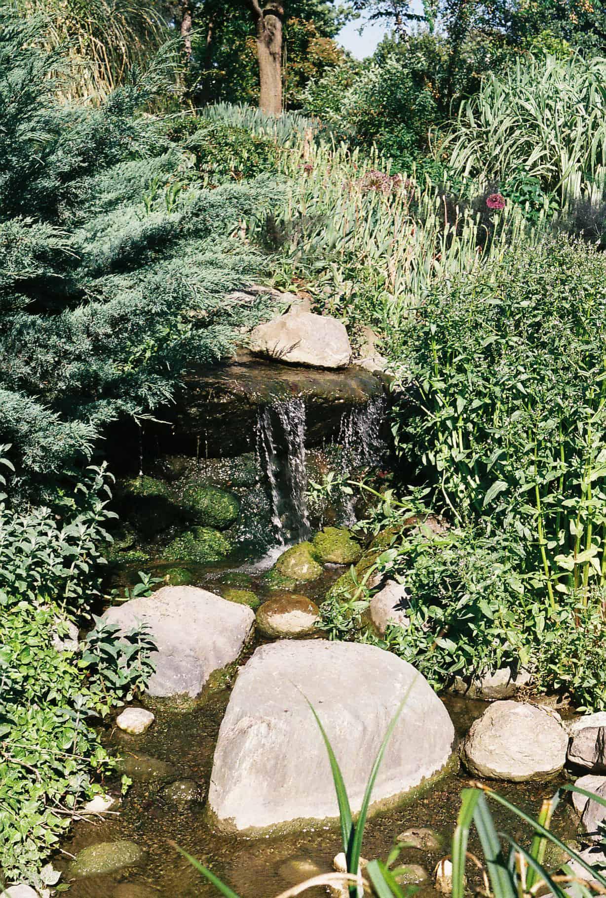 Istanbul Botanical Garden