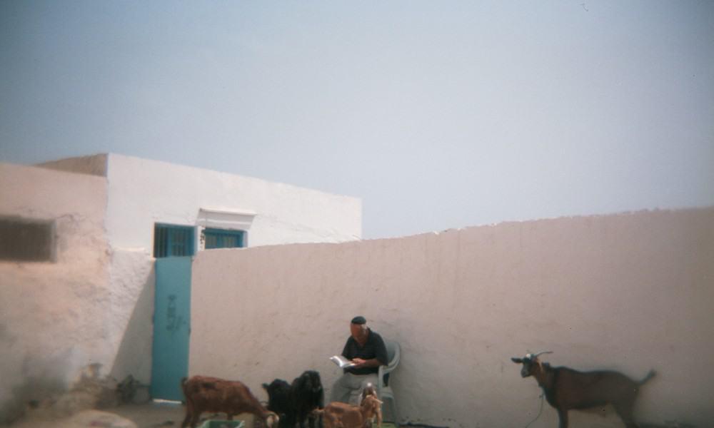 Tunisia on a Holga